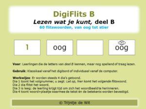 DigiFlits B